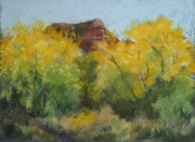 Palo Duro Yellows Pastel